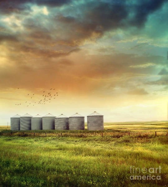 Photograph - Prairie Grain Silos In Late Summer by Sandra Cunningham