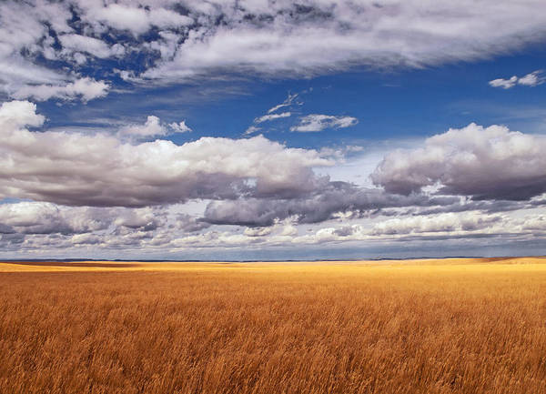 Wall Art - Photograph - Prairie Wyoming U S A by Don Spenner