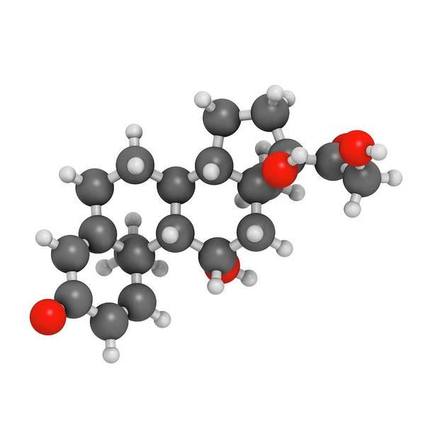Inflammation Wall Art - Photograph - Prednisolone Corticosteroid Drug Molecule by Molekuul