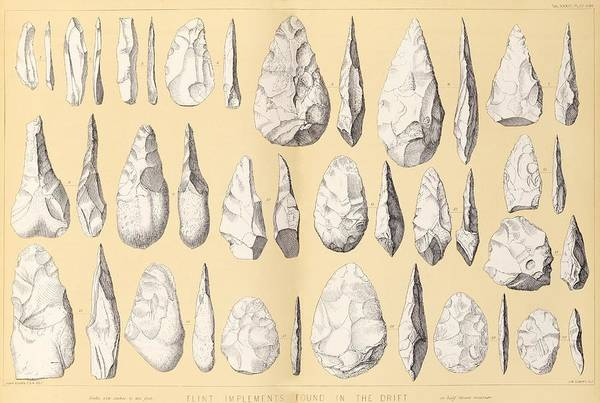 Artifacts Wall Art - Photograph - Prehistoric Stone Tools by Middle Temple Library