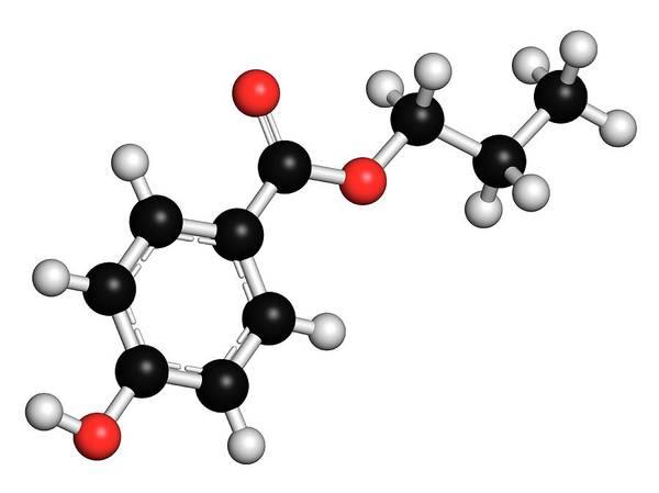 Preservative Wall Art - Photograph - Propyl Paraben Preservative Molecule by Molekuul
