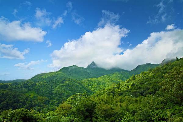 Puerto Rico Photograph - Puerto Rico, Luquillo, El Yunque by Miva Stock