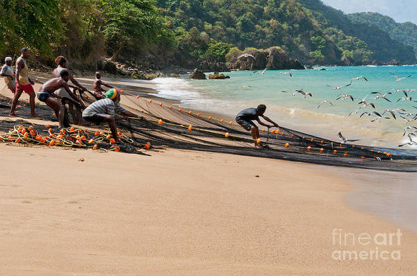 Tobago Wall Art - Photograph - Pulling Seine by Marion Galt