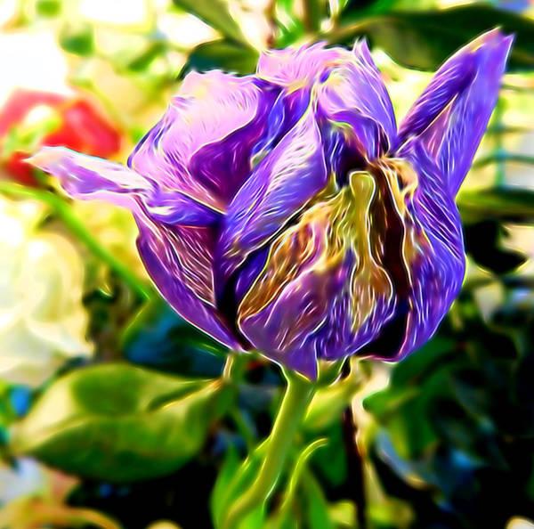 Mixed Media - Purple Flower by Pamela Walton
