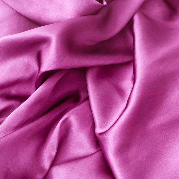 Wall Art - Photograph - Purple Silk by Tom Gowanlock
