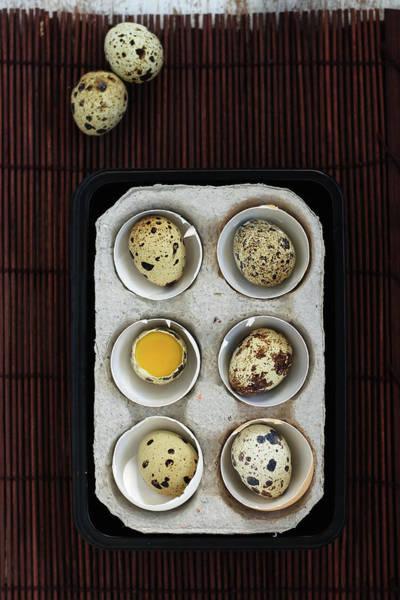 Yolk Wall Art - Photograph - Quail Eggs by Ashasathees Photography