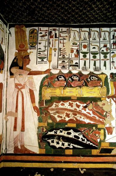 Hieroglyph Photograph - Queen Nefertari by Patrick Landmann/science Photo Library