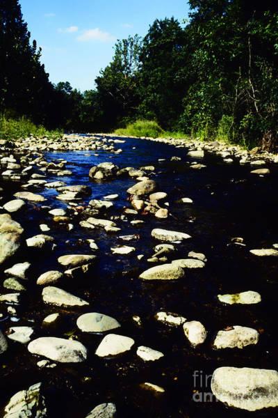 Photograph - Rapidan River by Thomas R Fletcher