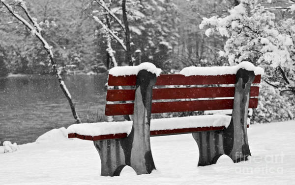 Photograph - Red Bench by Karin Pinkham