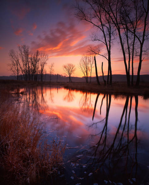 Photograph - Red Dawn by Ray Mathis