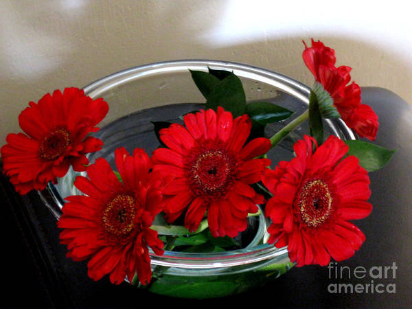 Red Flowers. Special Art Print