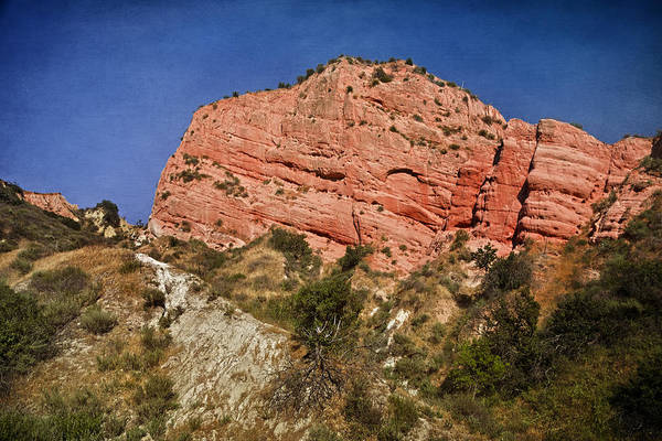 Photograph - Red Rock Canyon by Joan Carroll