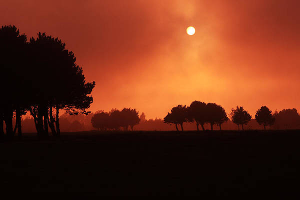 Photograph - Red Mist by Aidan Moran