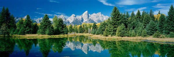 Schwabacher Photograph - Reflection Of Trees In Water by Panoramic Images