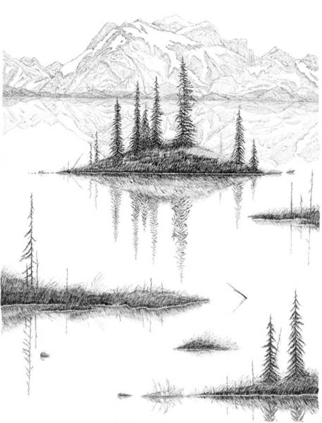 Drawing - Reflections by Carl Genovese