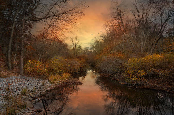 Photograph - Remains Of The Day by Robin-Lee Vieira