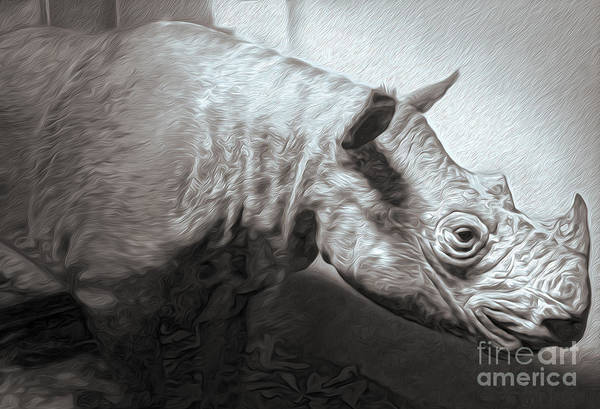 Painting - Rhino by Gregory Dyer