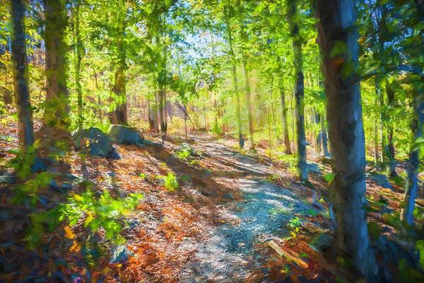 Photograph - Right Path Lake Ames Rockaway Township Nj Painted    by Rich Franco