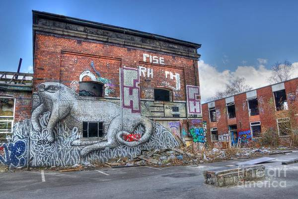 Photograph - Rise by David Birchall