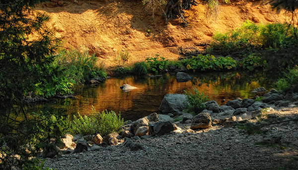 Wall Art - Photograph - River Of Gold by Donna Blackhall