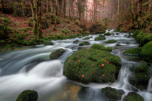 Comte Wall Art - Photograph - River by Philippe Saire - Photography