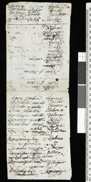 Manuscript Photograph - Robert Brown's Expedition Notes by Natural History Museum, London/science Photo Library