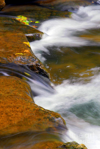 Photograph - Rock And Water by Paul W Faust -  Impressions of Light