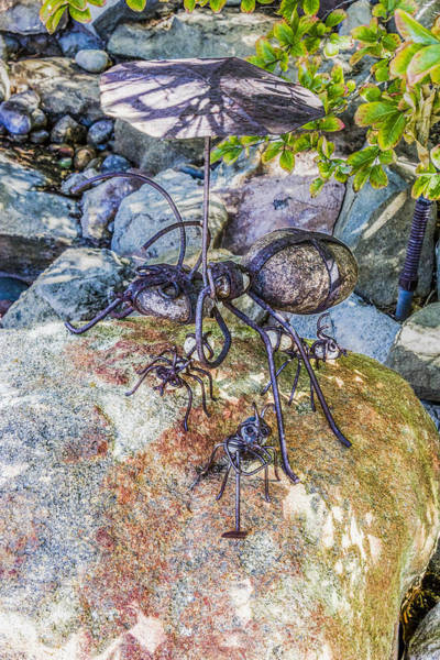 Digital Art - Rock Ants by Photographic Art by Russel Ray Photos