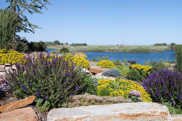 Photograph - Rock Garden And River by Cindy Singleton