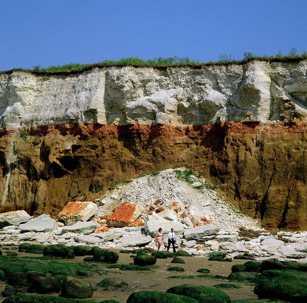 Wall Art - Photograph - Rock Strata In Cliff by Dr Jeremy Burgess/science Photo Library