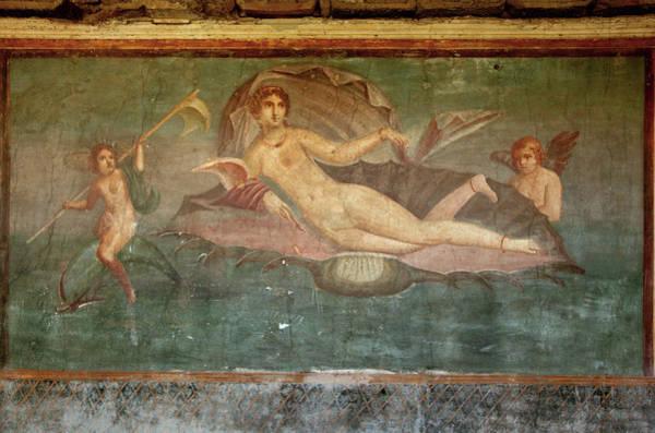Wall Art - Photograph - Roman Fresco by Science Photo Library
