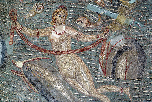 Tunisia Wall Art - Photograph - Roman Mosaic In The Bardo Museum by Marco Ansaloni / Science Photo Library