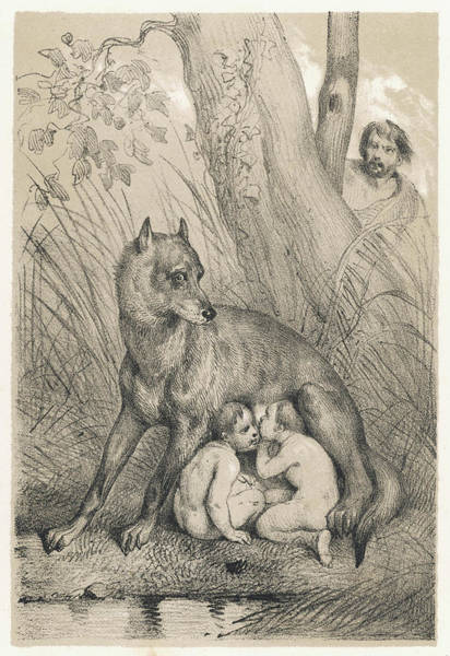 Wall Art - Drawing - Romulus And Remus Are Suckled by Mary Evans Picture Library