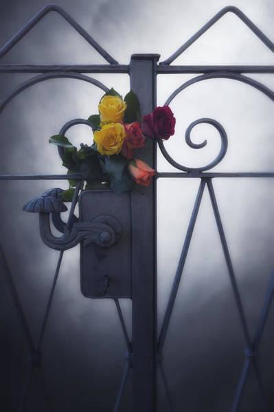 Lock Gates Photograph - Roses by Joana Kruse