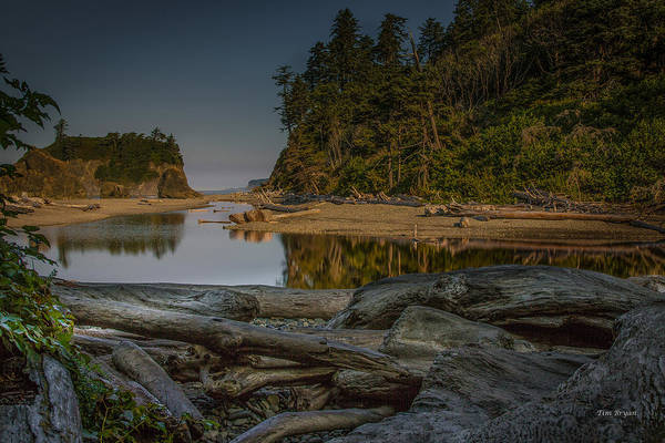 Photograph - Ruby Beach Morning - Olympic National Park by Tim Bryan