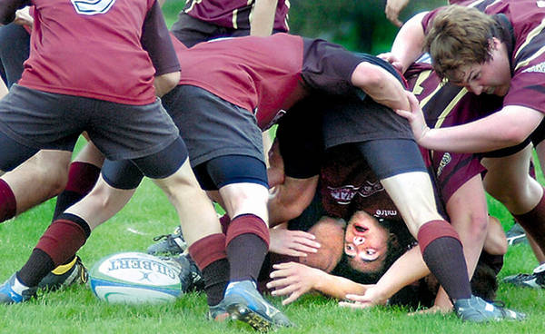 Photograph - Rugby Determined by Steve Somerville