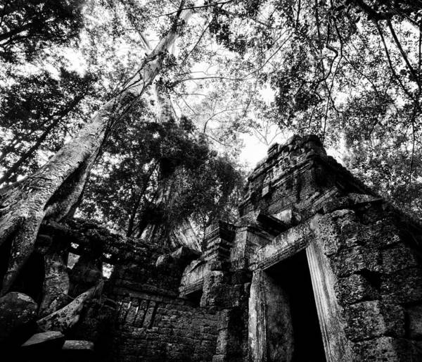 Angkor Wall Art - Photograph - Ruins by Julian Cook