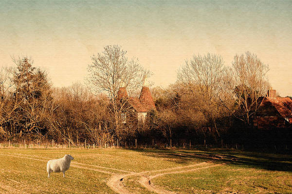 Wall Art - Photograph - Rural England by Sharon Lisa Clarke