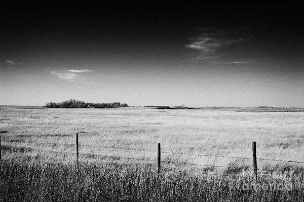 Wall Art - Photograph - rural prairie grassland and farmland in open fields bengough Saskatchewan Canada by Joe Fox