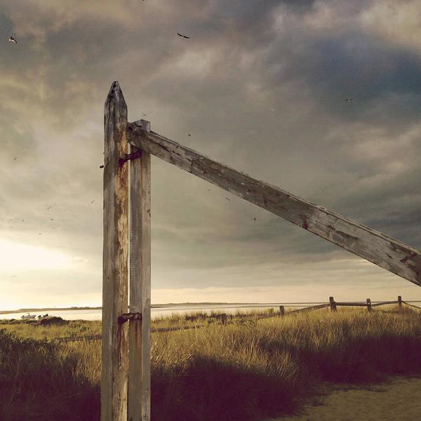 Photograph - Rustic by Natasha Marco