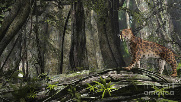 Smilodon Wall Art - Digital Art - Saber-toothed Tiger In A Prehistoric by Kostyantyn Ivanyshen