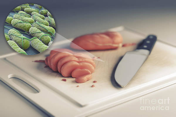 Wall Art - Photograph - Salmonella Contamination by Science Picture Co