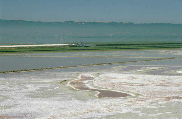 Salt Pond Photograph - Salt Production by David Parker/science Photo Library
