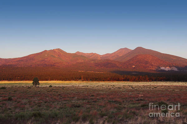 Art Print featuring the photograph San Francisco Peaks Sunrise by Jemmy Archer