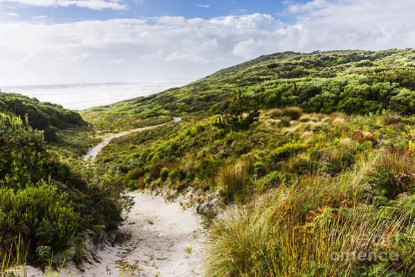 Photograph - Sand Dune Path Leading To Tasmania Beach Landscape by Jorgo Photography - Wall Art Gallery