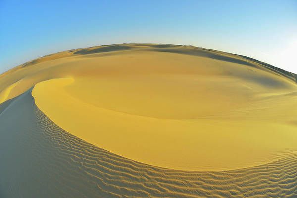 Sand Photograph - Sand Dune by Raimund Linke