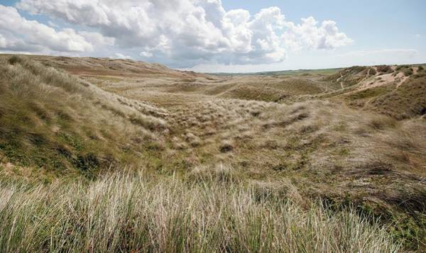 West Wales Photograph - Sand Dunes by Annie Haycock