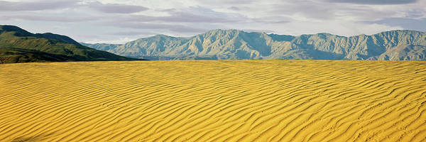 Wall Art - Photograph - Sand Dunes In A Desert With A Mountain by Panoramic Images