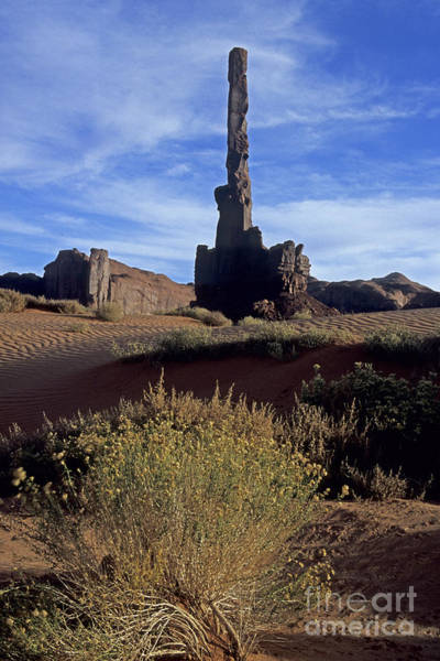 Photograph - Sand Dunes Totem Pole by Fred Stearns