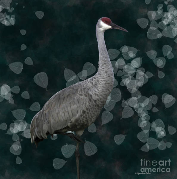 Sandhill Crane On Leaves Art Print